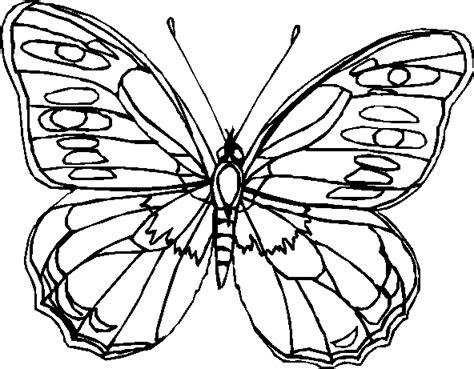 disegni da colorare farfalle e fiori farfalle immagine da colorare n 13359 cartoni da colorare