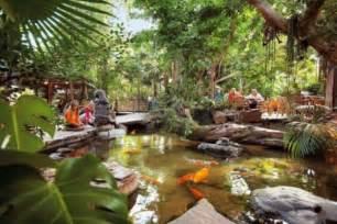 Small Tropical Backyard Ideas Minimalist Tropical Garden Design Ideas Beautiful Homes Design