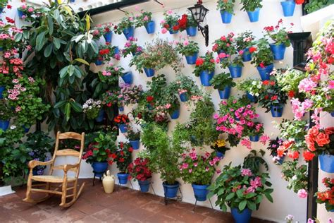 Cordoba Patio Festival by Join Me Devour Andalusia Culinary Tour September 2017