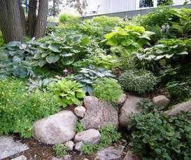 design lessons from a minnesota shade garden gardens beautiful and minnesota