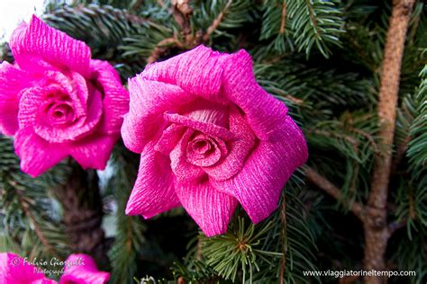 dei fiori monte isola la festa dei fiori di santa croce