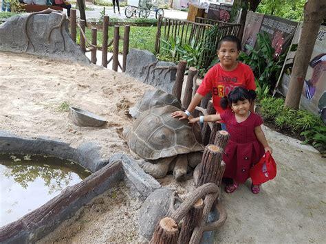 Sho Kuda Di Bogor fauna land objek wisata terbaru di jakarta