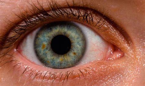imagenes ojos grandes lo que seguramente no sab 237 as sobre c 243 mo ven tus ojos