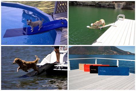 dog boat ladder pontoon home doggydocks dog ladder for pontoon boat martine ouellet