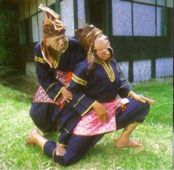 martial arts silat harimau the deadly beauty indonesian people info your guide to know about