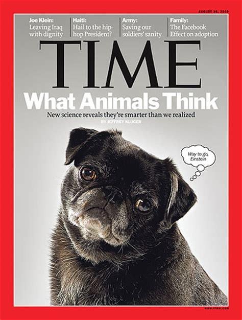 pug magazine pug on cover of time magazine