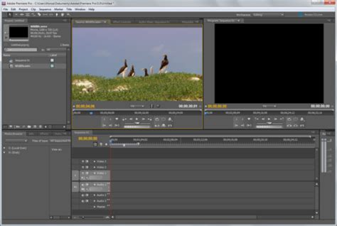 adobe premiere pro video editing software the best video editing software similar to sony vegas