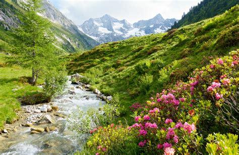 urlaub alpen hütte tirol im fr 252 hling erlebnisse zwischen bergen kultur