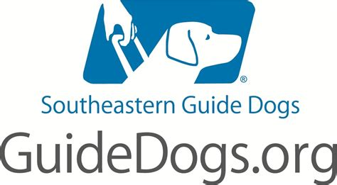 southeastern guide dogs every day is veteran s day with special dogs that heal