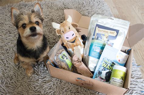 puppy subscription box treats great subscription gift boxes for dogs and cats