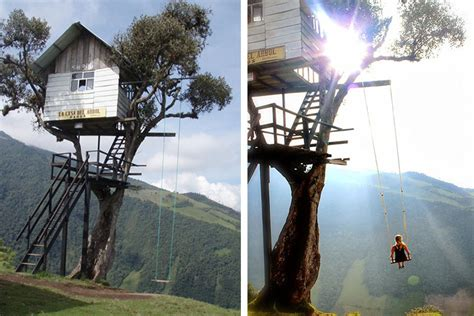 swing house la amazing tiny treehouse boasts the world s wildest swing
