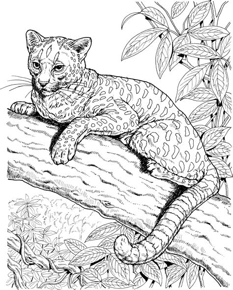 free jaguar coloring pages
