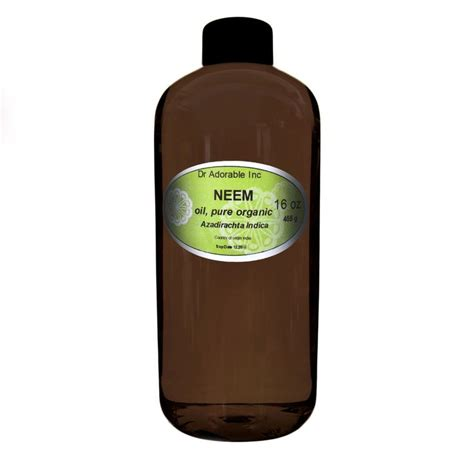 neem oil for bed bugs 25 best ideas about killing japanese beetles on pinterest
