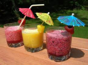 paradise fruit drinks for kids susan s homeschool blog