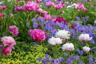 Raised Bed Gardening In Texas - best perennials for gardeners in new england