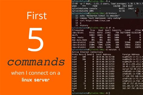 tutorial linux server first 5 commands when i connect on a linux server linux