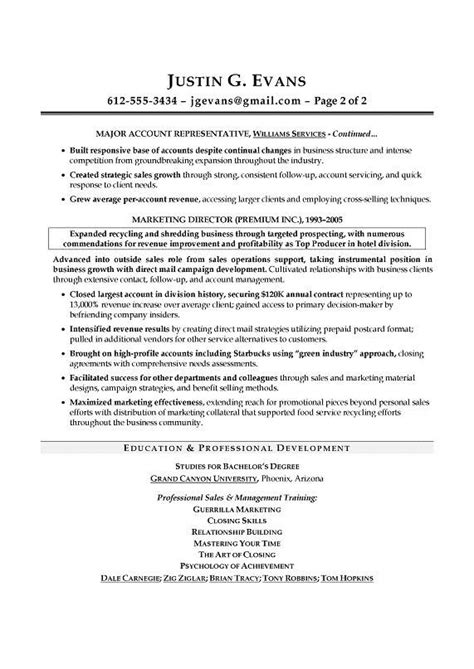 Sales Professional Resume by 17 Best Ideas About Sales Resume On Marketing