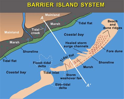 louisiana barrier islands map urbanization and barrier islands panethos