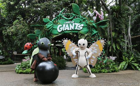 singapore zoo new year 2015 enter the land of giants at singapore zoo and river safari