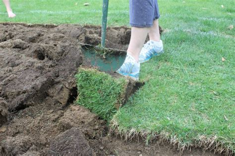 Grass Removal how to remove sod and easy cottage4c
