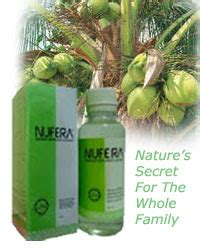 Minyak Kelapa Dara Nufera stokis bio asli kota bharu