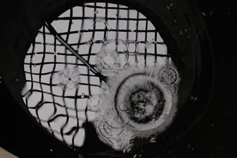 cigola la carrucola pozzo testo eugenio montale cigola la carrucola nel pozzo