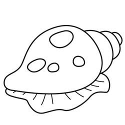 shell coloring pages sea shells coloring pages