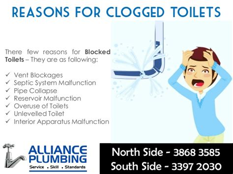 how to a for toilet how to fix a clogged blocked toilet few important tips alliance