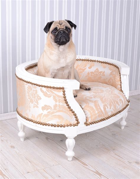 bed pugs dog bed baroque dog sofa cream bed for pugs ebay
