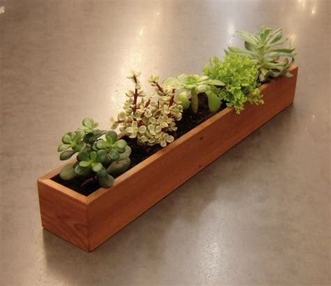Window Planters Indoor by Window Succulent Planter Indoor Gardening