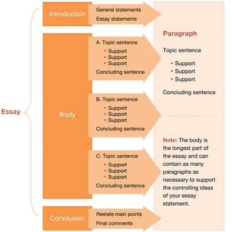 Structure Of Essay Writing by Essay Writing Structure Essay Writing
