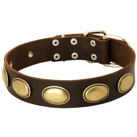 rottweiler leather collars vintage leather collar with oval plates for rottweiler rottweiler store