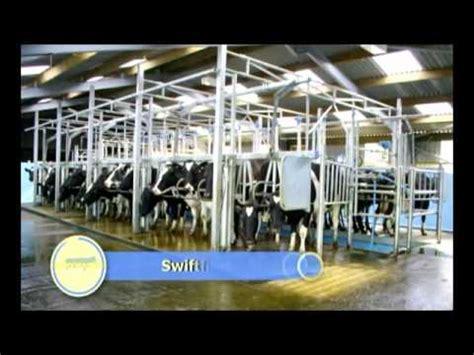 swing melkstand dairymaster swiftflo melkstand smt