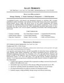 resume exle executive or ceo careerperfect