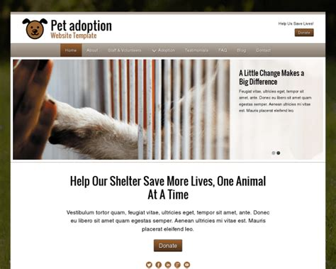 puppy adoption websites vorlagenbereich tierheim