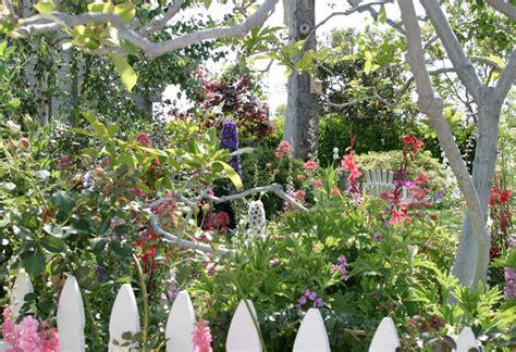 gardening for butterflies butterfly gardening butterflies host plants howw