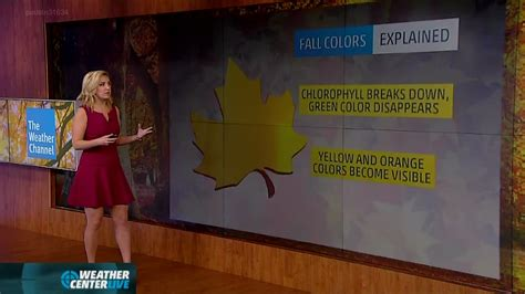 weather channel alex wilson feet weather channel alex wilson feet pictures to pin on