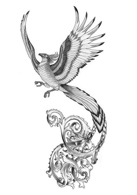 10+ Phoenix Drawing Ideas - Visual Arts Ideas
