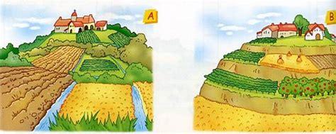 terrazzamenti in collina colline
