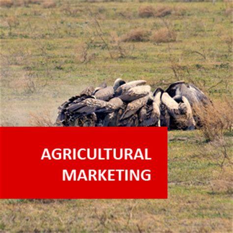 agricultural marketing   business management