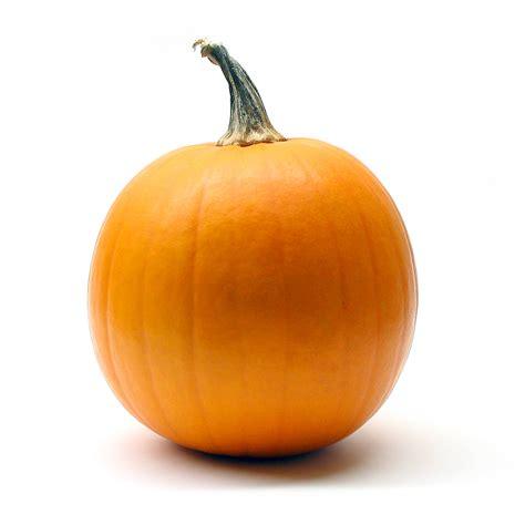 significance of pumpkin in pumpkin 08 photo