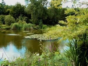 botanischer garten muenchen panoramio photo of botanischer garten m 252 nchen