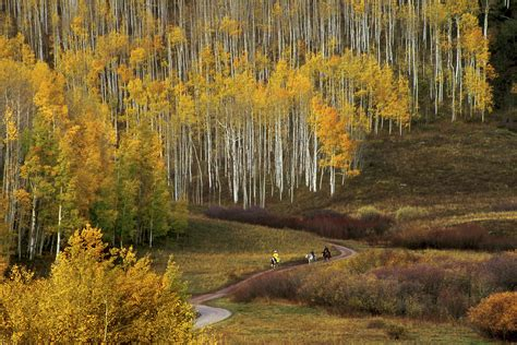 fall color colorado fall color guide best hikes drives and events