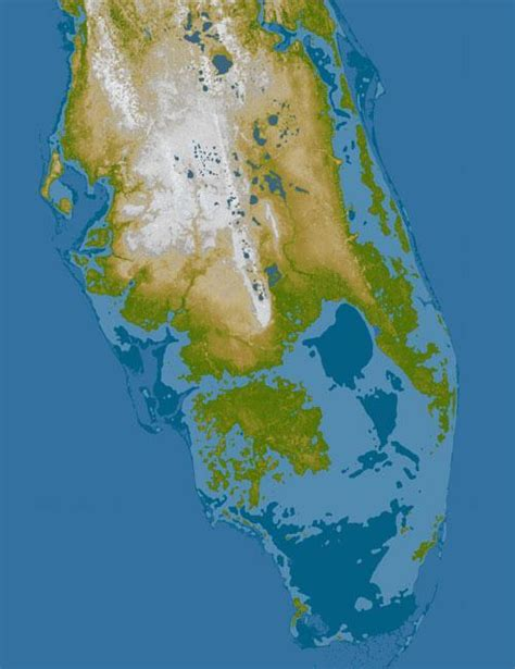 how fast is florida sinking florida mayors beg debate moderators to discuss sea level