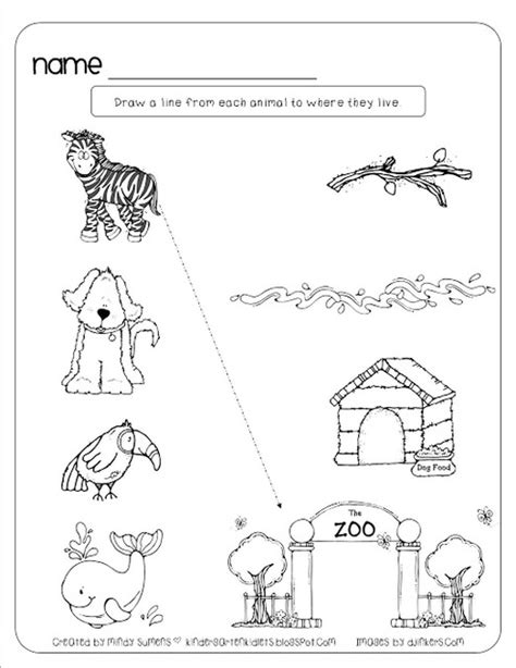 water animals worksheets kindergarten land and water animals worksheets for kindergarten science animals worksheets