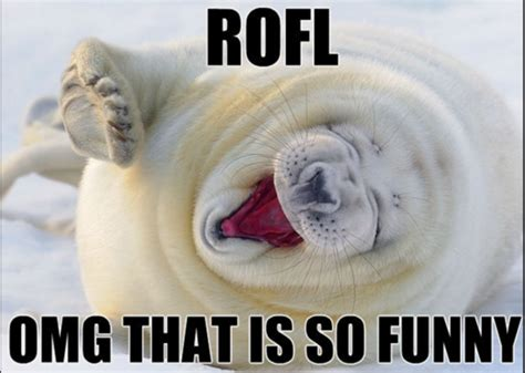 Rofl Meme - what does rofl mean