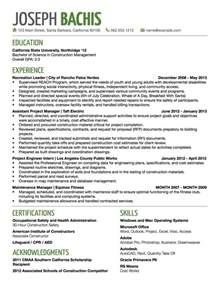 good resume titles examples 2