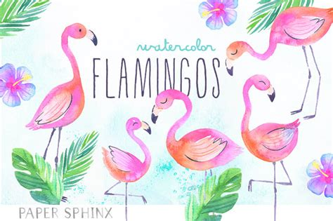 Hipster Nursery Watercolor Flamingos Clipart Tropical Flamingos Summer