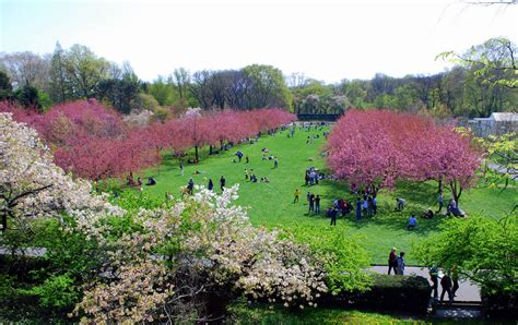 Bk Botanical Gardens Botanic Garden New York Usa Traveldigg
