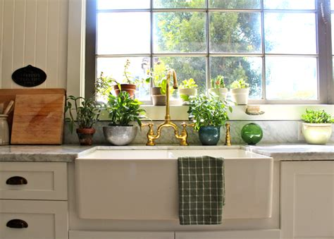 plants in kitchen 5 easy ways to accessorize your newly remodeled kitchen